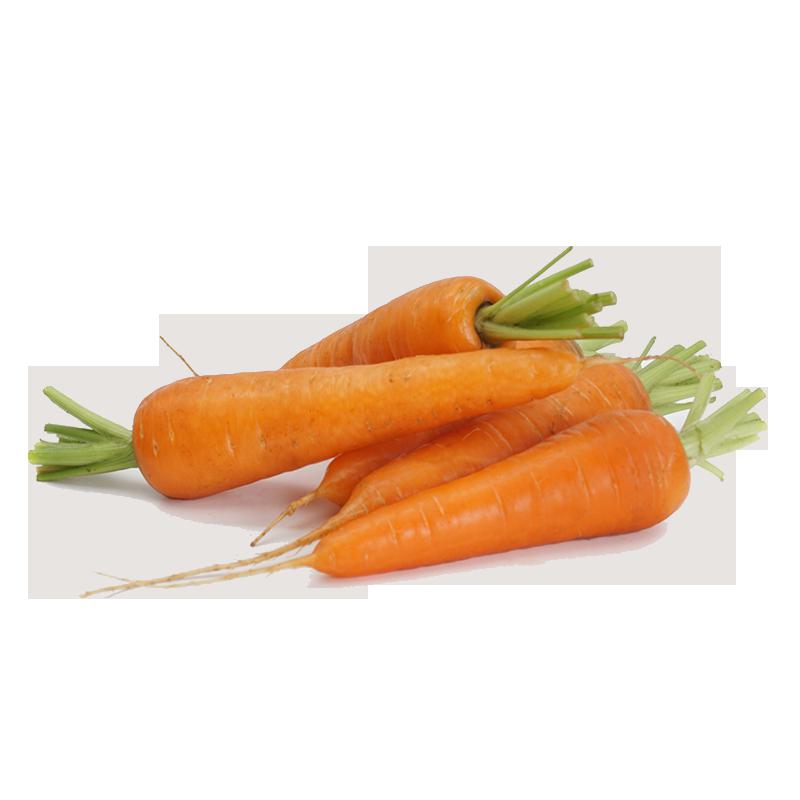 Carrots Loose